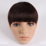 Clip on Bang Fringe Hair Wig Extension Hairpieces Lady's
